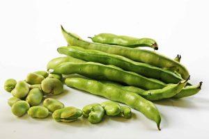 fava-beans-horiz-a-1200